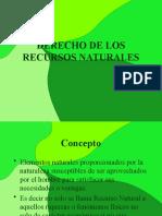 DERECHO DE LOS RECURSOS NATURALES