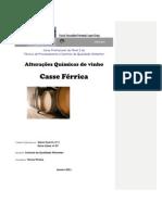 Trabalho- Casse Ferrica[1]