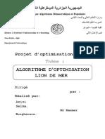 Projet Optimisation