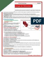 07. Physiologie de l'Hémostase