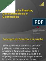 Ruiz DerechoConst Prueba-Concepto-Caracteristicas-Contenidos-marzo-2021