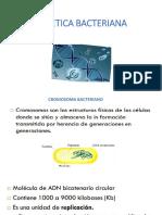 GENETICA BACTERIANA- APLICACIONES