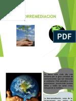 BIORREMEDIACION -BIOLIXIVIACION Y METAGENOMICA (1)