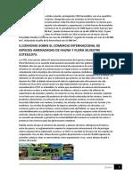 MARCO LEGAL CONVENIO Y TRATADOS 5