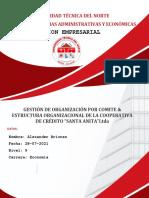 Alexander Briones_1 Estructura Organizacional por Comite_28-07-2021