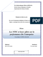 Les NTIC et leurs effets sur la performance de l'entreprise