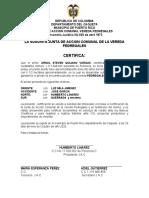 LA SUSCRITA JUNTA DE ACCION COMUNAL DE LA VEREDA PEDREGALES