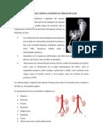 Malformaciones Congénitas Urogenitales, Renales, Hidrocele, fimosis...