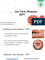 Aula 5 - HPV