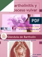 Bartholinitis y absceso vulvar