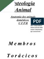 Osteologia Animal(2)