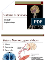 sistemanervioso-100519115830-phpapp02
