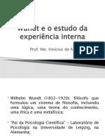 Wundt Psicologia Rumos e Percursos