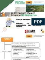 Curso Virtual Expedientes Tecnicos Enapip 2020