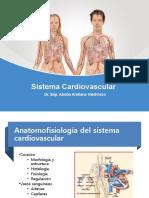 Anatamía y Fisiología Cardiovascular