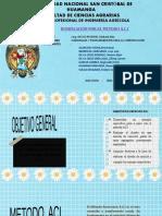 DOSIFICACION A.C.I. GRUPO 4