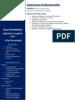 CV wael  (1) (1)
