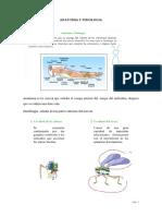 Anatomia y Fisiologia Ecologia y Sistemtica Ento i