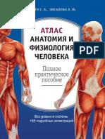 Атлас_Анатомия_и_физиология_человека