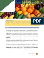 Práctica 8_ Fruto y Semilla_II-2021- (2)