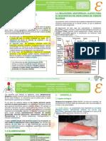 08-INF-03-03-21-INFECCIONES DE PIEL Y PARTES BLANDAS