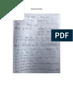 Soporte Parcial Final Metodos Numericos