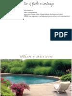 3.landscape and plants