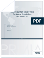 US CONSUMER CREDIT RISK 1Q011