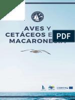 aves-cetaceos-macaronesia