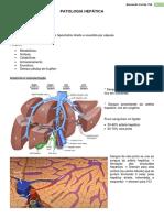 4. Patologia Hepática