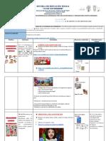 Planificacion Ficha 11 Preparatoria (1)