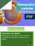Clonación celular