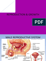 40599510-Reproduction-Growth