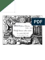 BACH JS Schafe Können Sicher Weiden (Ex. BWV 208) Arr. S & Org