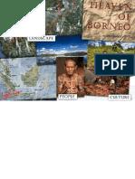 Heaven of Borneo