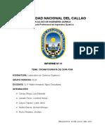 INFORME N°11 LAB. ORGANICA - cromatografia