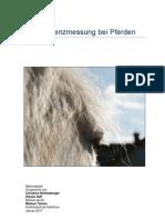 Intelligenzmessung bei Pferden