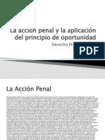 5.- La Acción y el Principio de Oportunidad