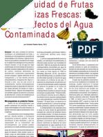 Efectos del agua contaminada en vegetales