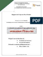 Rapport_de_Projet_de_Fin_dEtudes_Concept