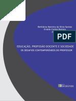 A FORMAÇÃO DIDÁTICO-PEDAGÓGICA DO PROFESSOR DO ENSINO SUPERIOR E A
