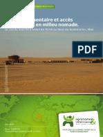 Marché à bétail  Nomade Nord Mali Avsf Decembre2013