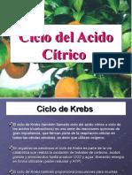 Ciclo_del_Acido_Citrico