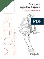 Morpho Formes Synthétiques