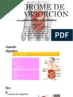 sndromedemalabsorcin-180117182703-convertido