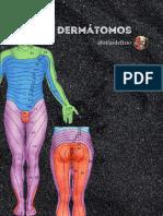Dermátomos