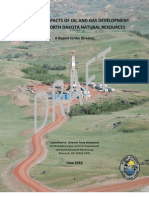 Directors Report on Oil and Gas_DRAFT