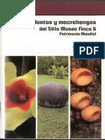 Guía de plantas y macrohongos del Sitio Museo Finca 6, Patrimonio Mundial