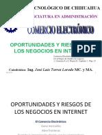 oportunidades y Riesgos de Los Negocios en Internet