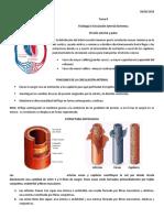 TEMA 8 Cir. Art. Sistemica (Presión y Pulso)